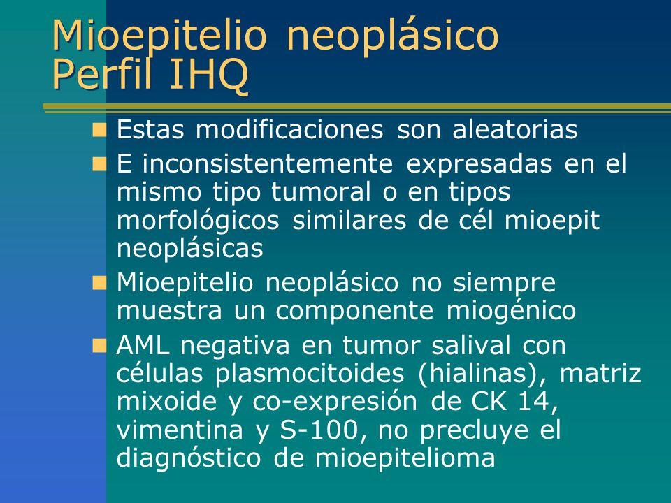 Mioepitelio neoplásico Perfil IHQ