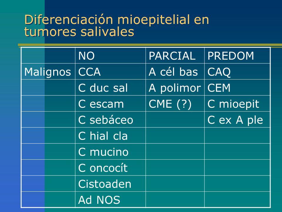 Diferenciación mioepitelial en tumores salivales