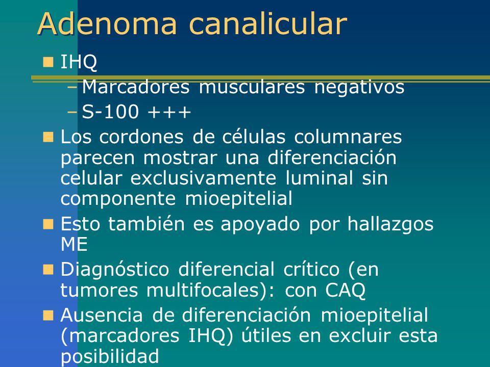 Adenoma canalicular IHQ Marcadores musculares negativos S-100 +++
