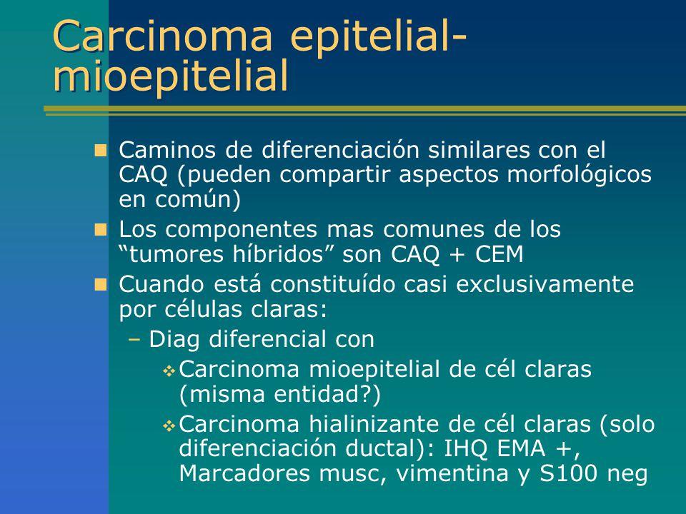 Carcinoma epitelial-mioepitelial
