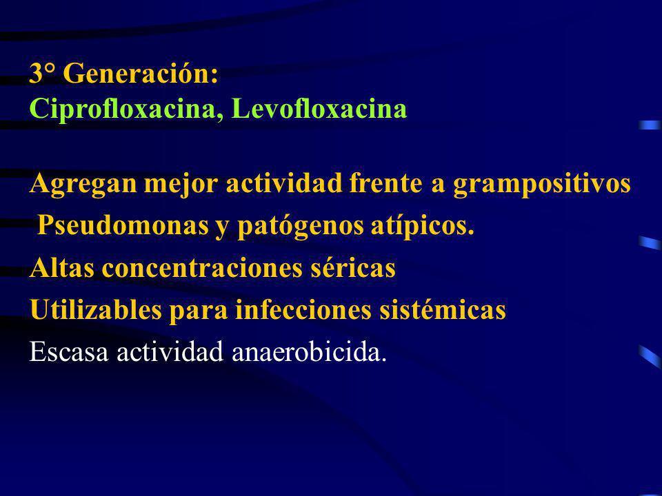 3° Generación: Ciprofloxacina, Levofloxacina. Agregan mejor actividad frente a grampositivos. Pseudomonas y patógenos atípicos.