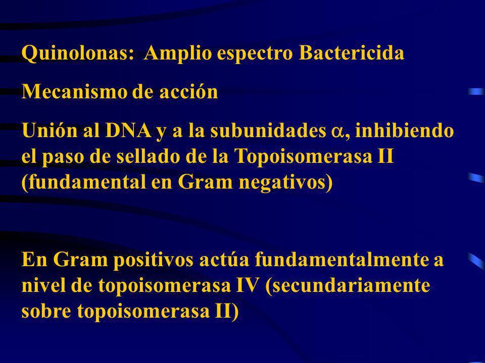 Quinolonas: Amplio espectro Bactericida
