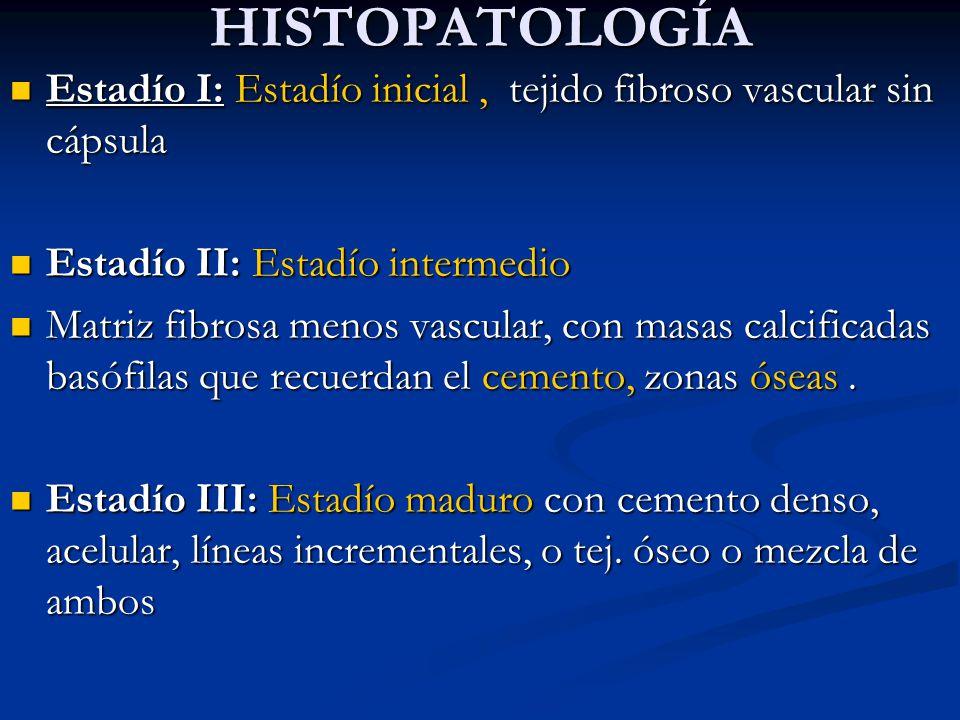 HISTOPATOLOGÍA Estadío I: Estadío inicial , tejido fibroso vascular sin cápsula. Estadío II: Estadío intermedio.