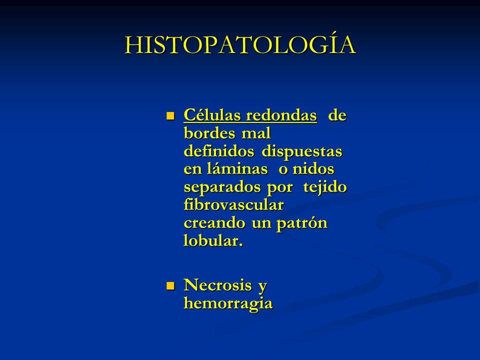 HISTOPATOLOGÍA