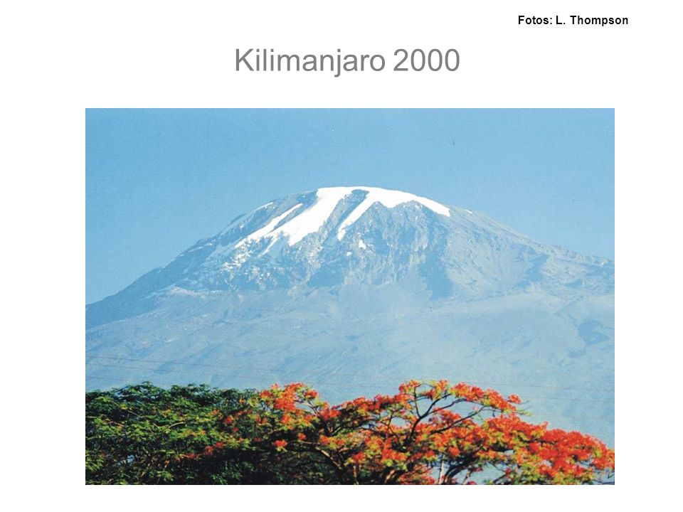 Fotos: L. Thompson Kilimanjaro 2000