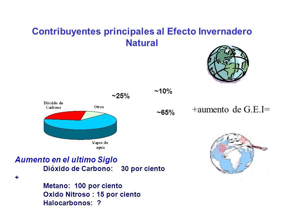 Contribuyentes principales al Efecto Invernadero Natural