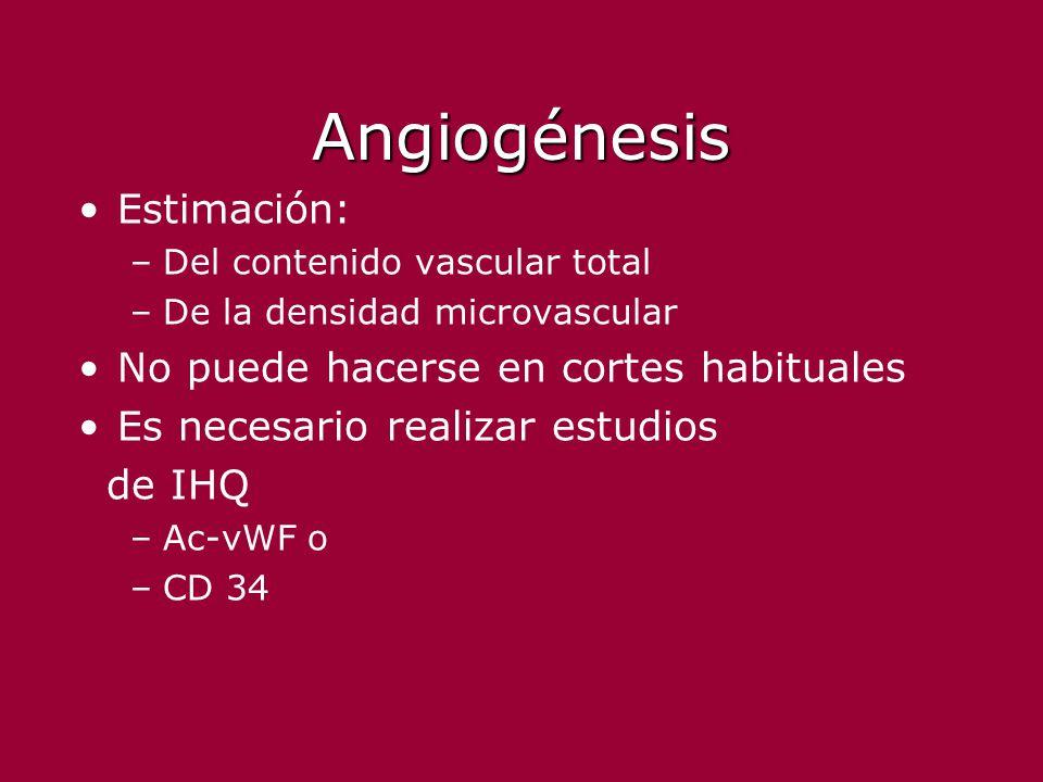 Angiogénesis Estimación: No puede hacerse en cortes habituales