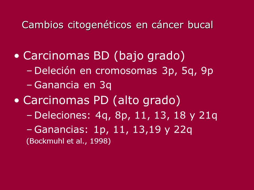 Cambios citogenéticos en cáncer bucal