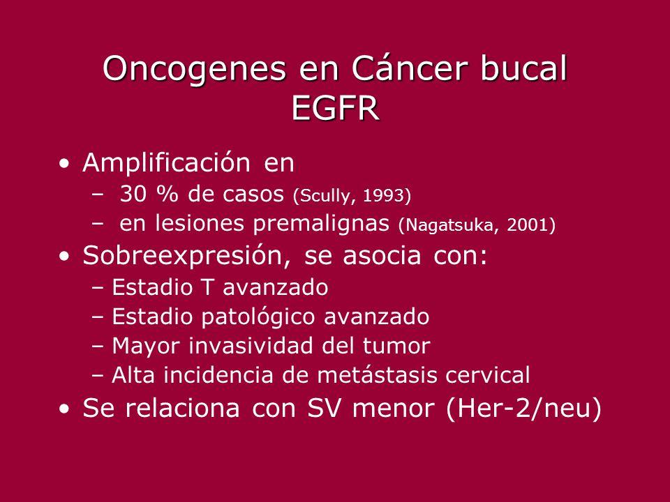 Oncogenes en Cáncer bucal EGFR