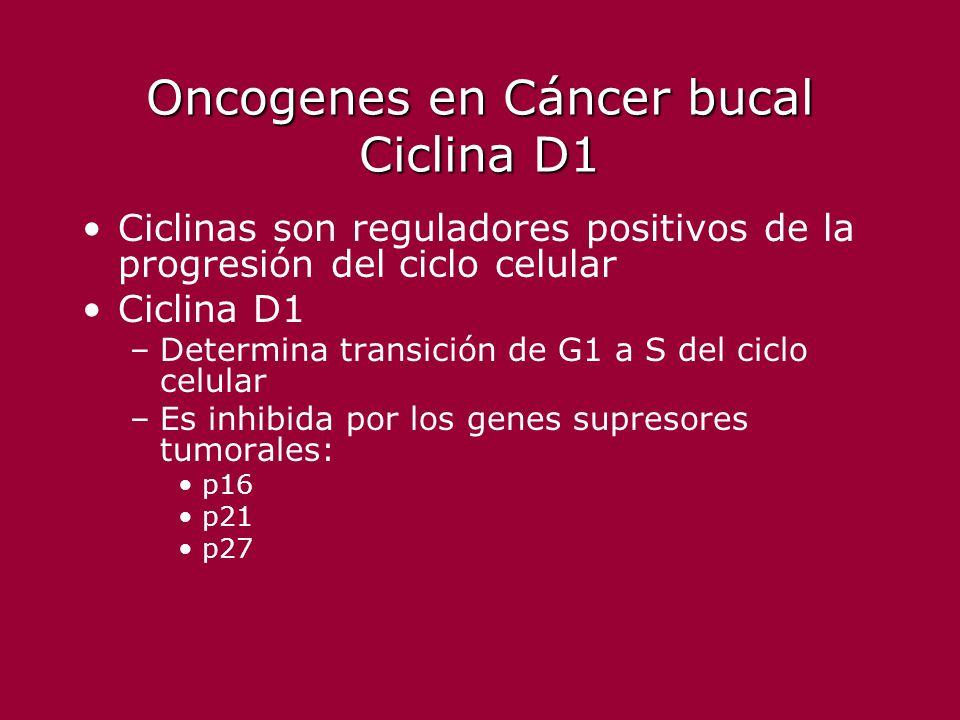 Oncogenes en Cáncer bucal Ciclina D1