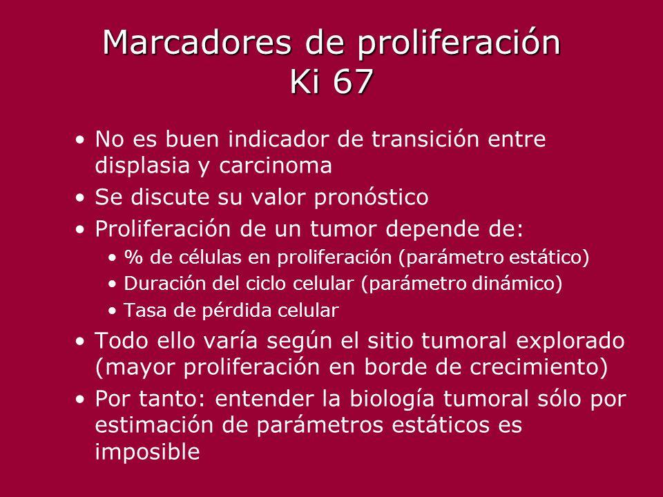 Marcadores de proliferación Ki 67