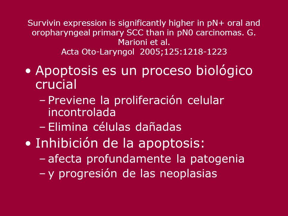 Apoptosis es un proceso biológico crucial
