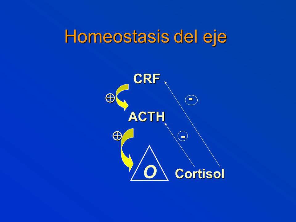 Homeostasis del eje CRF  - ACTH  - Cortisol O
