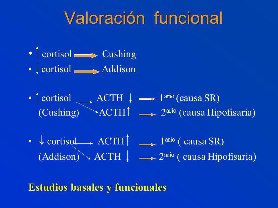 Valoración funcional cortisol Cushing Estudios basales y funcionales