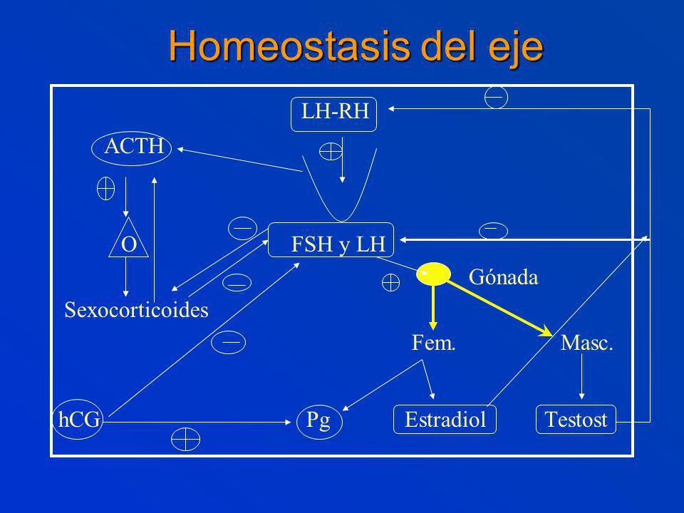 Homeostasis del eje LH-RH ACTH O FSH y LH Gónada Sexocorticoides
