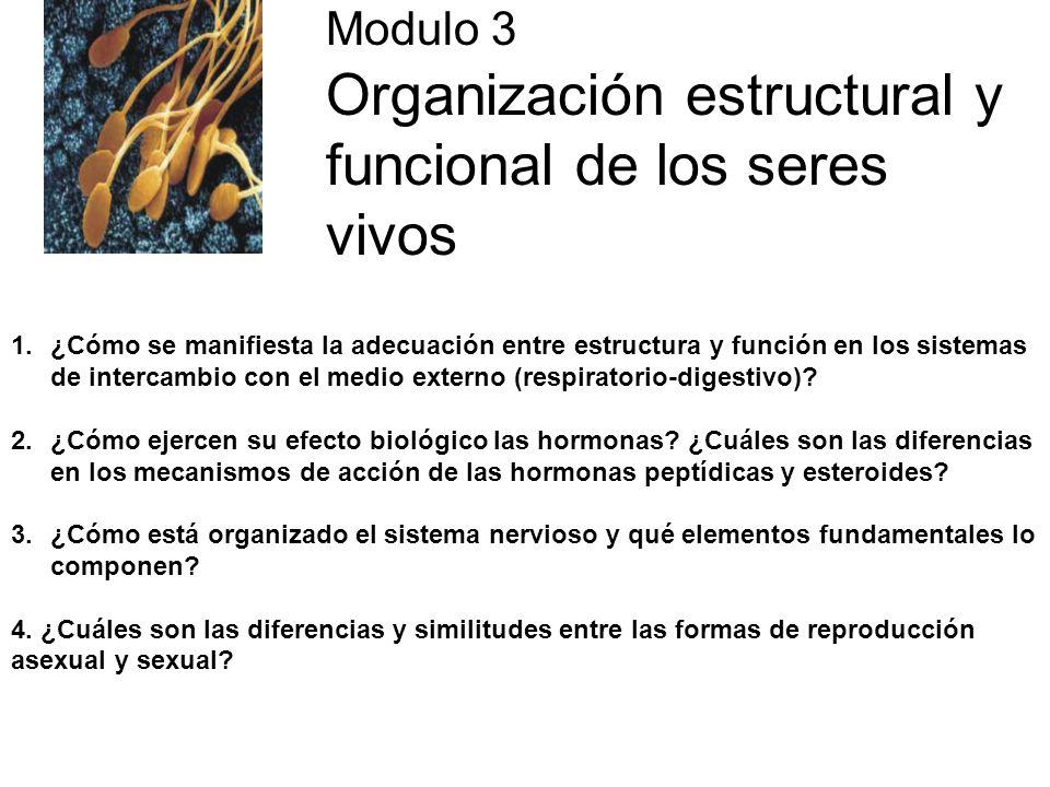 Modulo 3 Organización estructural y funcional de los seres vivos