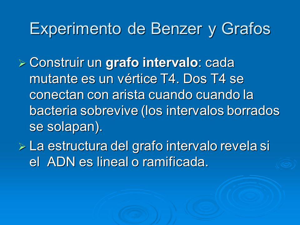 Experimento de Benzer y Grafos