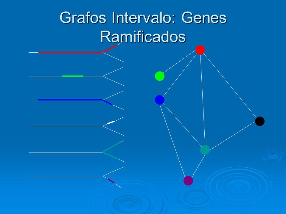 Grafos Intervalo: Genes Ramificados
