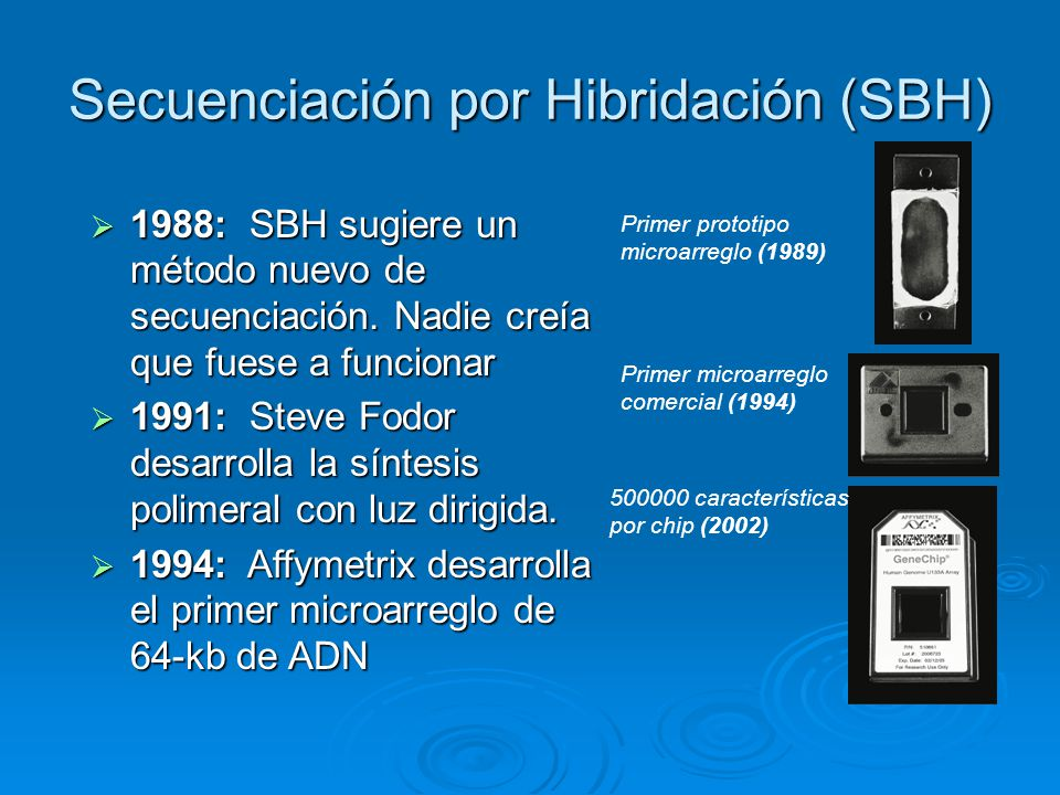 Secuenciación por Hibridación (SBH)