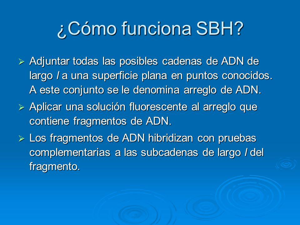 ¿Cómo funciona SBH