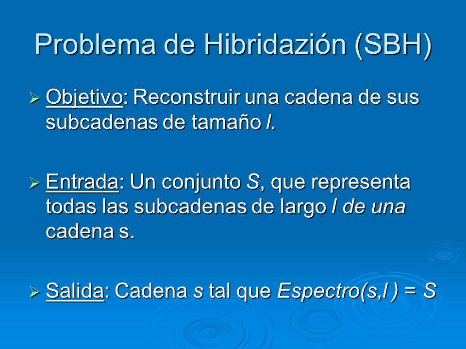 Problema de Hibridazión (SBH)