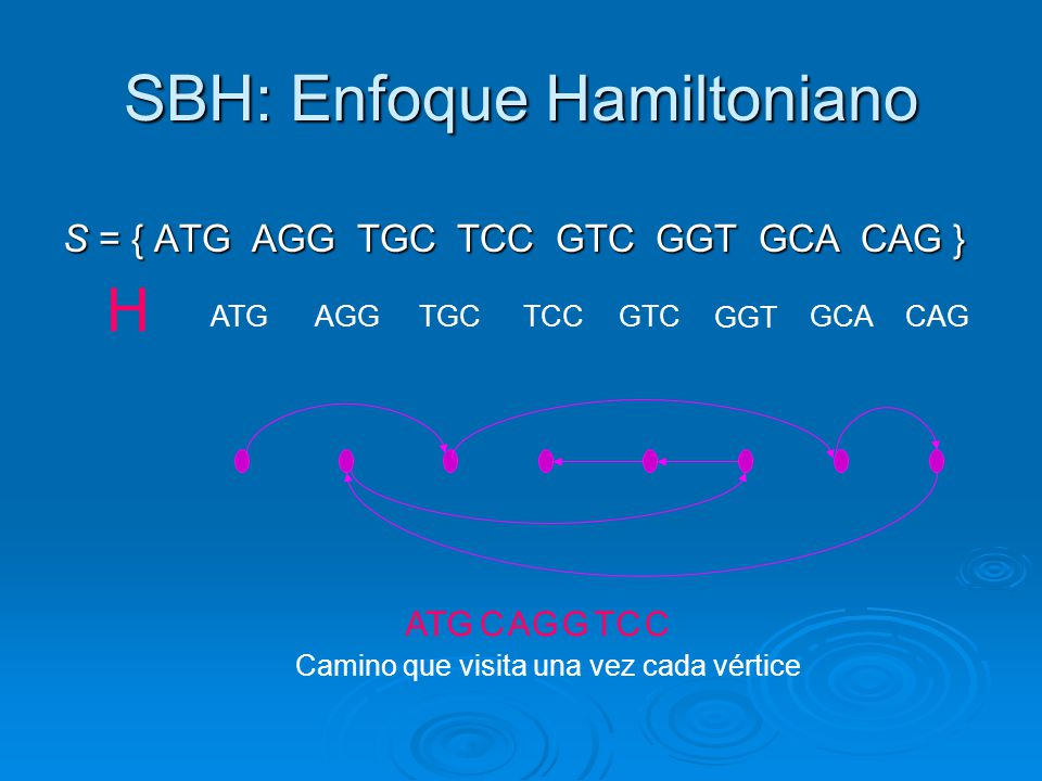 SBH: Enfoque Hamiltoniano
