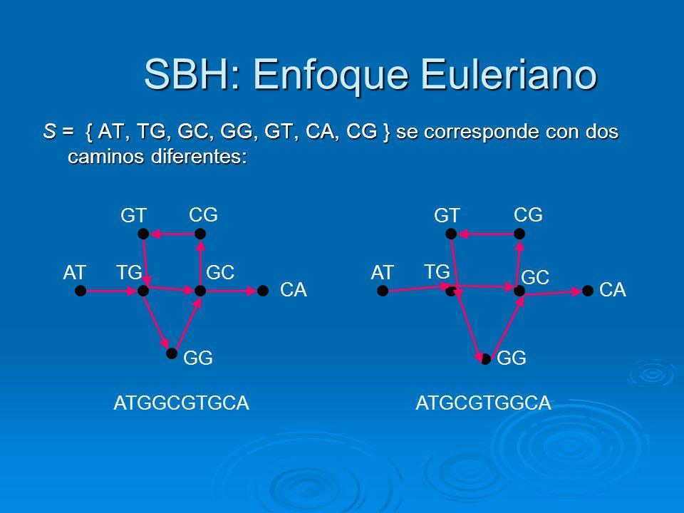 SBH: Enfoque Euleriano