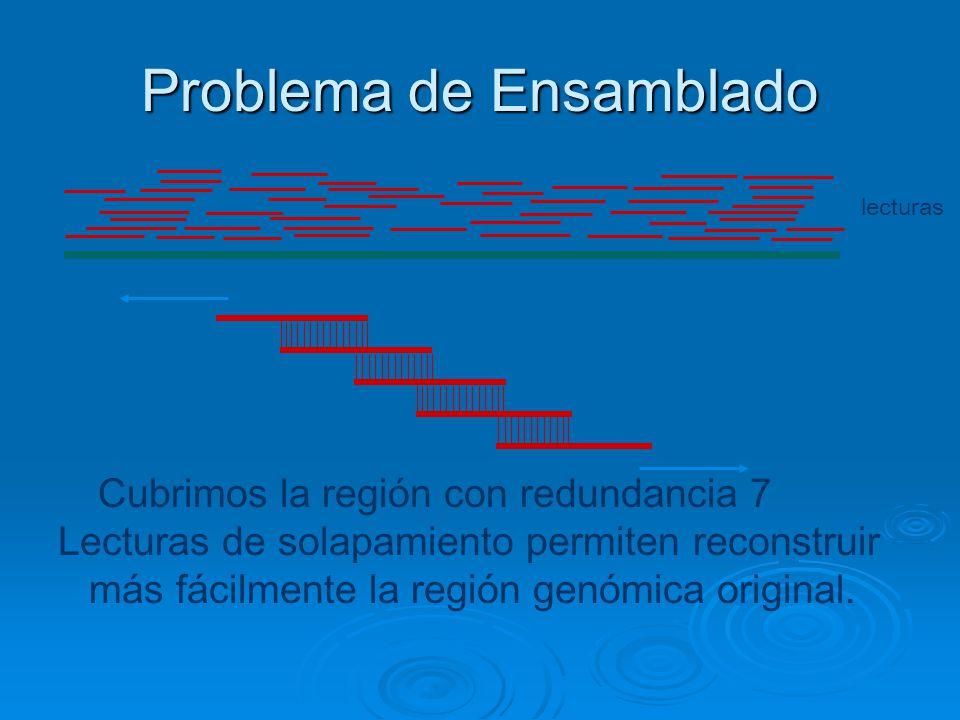 Problema de Ensamblado