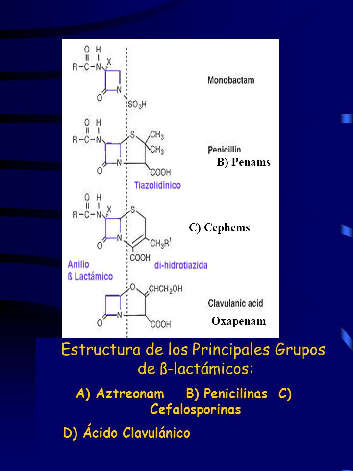 A) Aztreonam B) Penicilinas C) Cefalosporinas