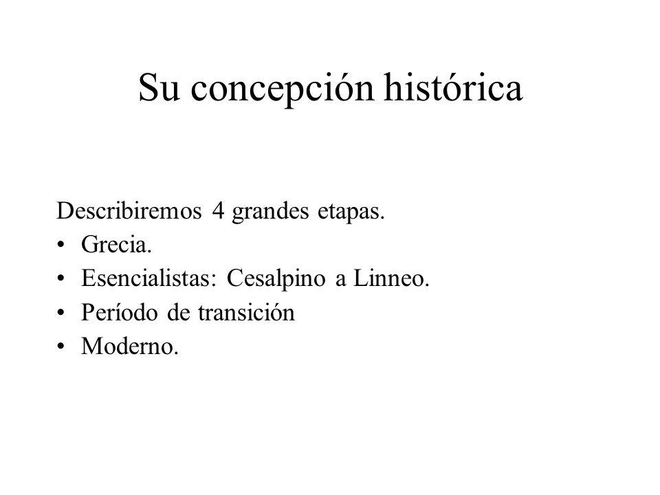 Su concepción histórica