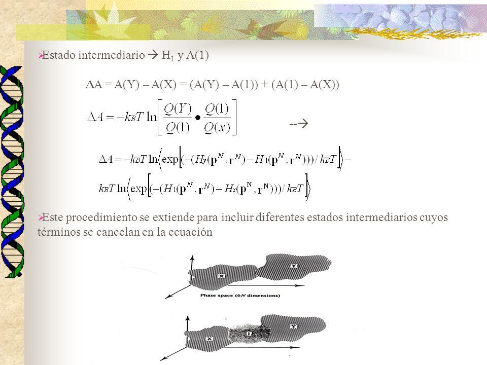 Estado intermediario  H1 y A(1)