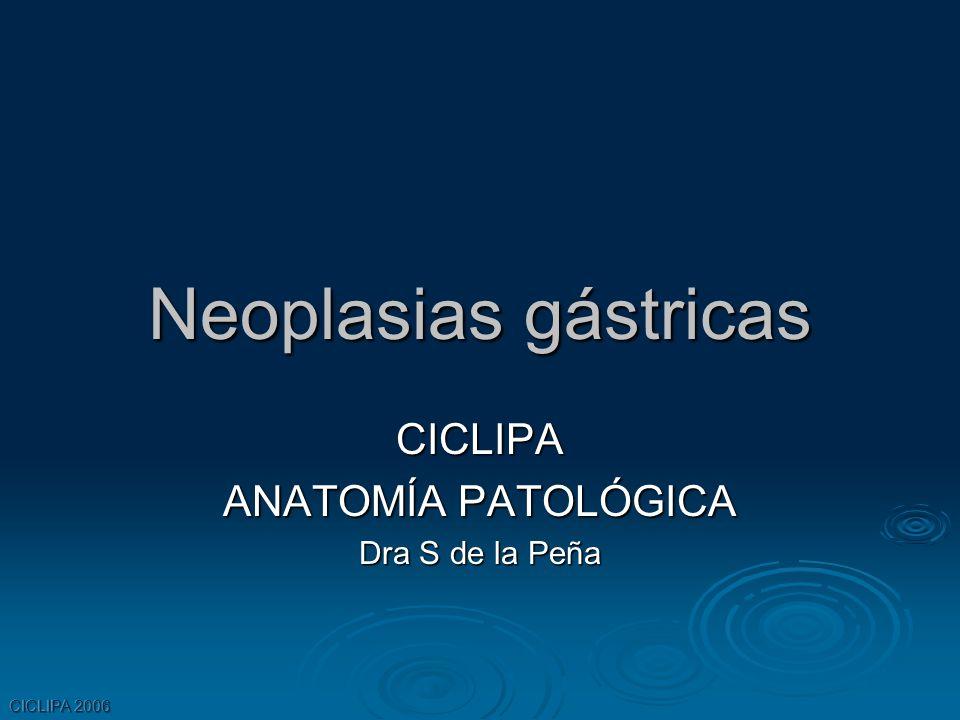 CICLIPA ANATOMÍA PATOLÓGICA Dra S de la Peña