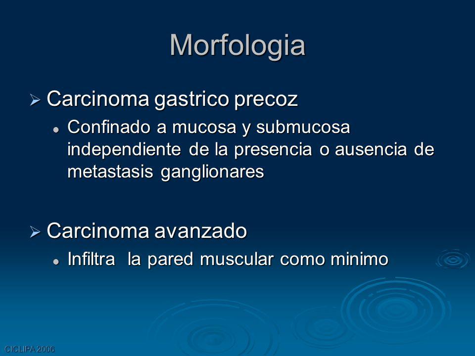 Morfologia Carcinoma gastrico precoz Carcinoma avanzado