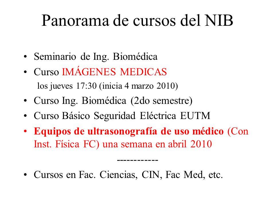 Panorama de cursos del NIB