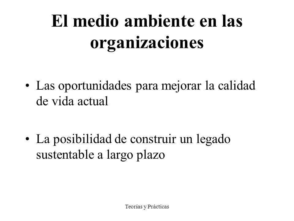 El medio ambiente en las organizaciones