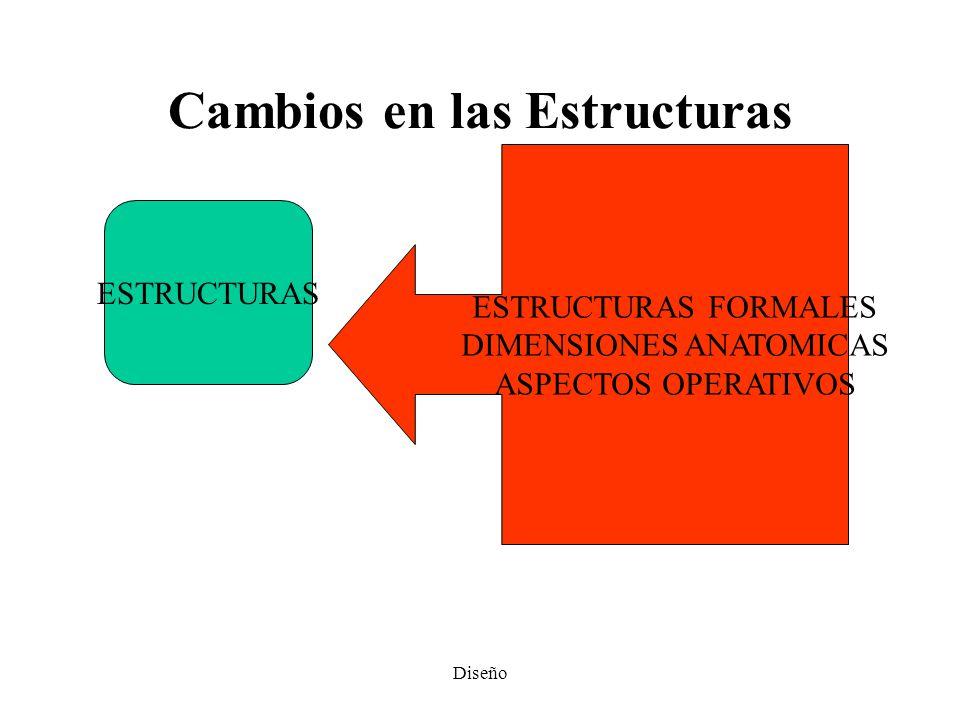 Cambios en las Estructuras