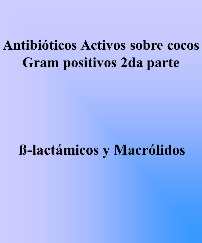 ß-lactámicos y Macrólidos