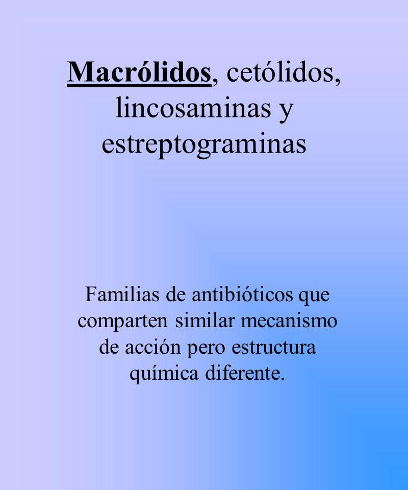 Macrólidos, cetólidos, lincosaminas y estreptograminas