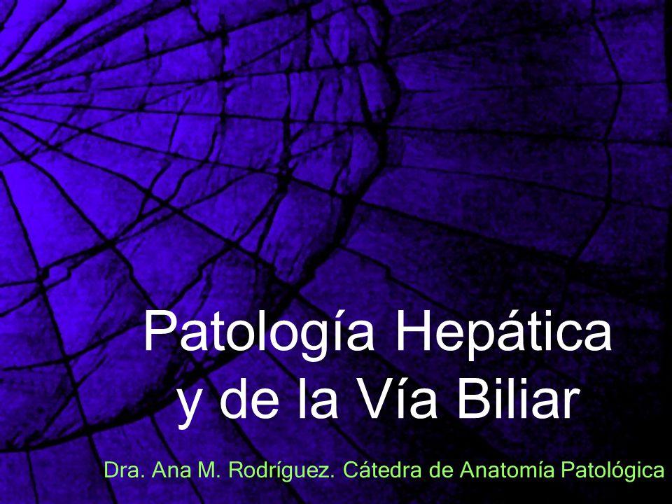 Patología Hepática y de la Vía Biliar
