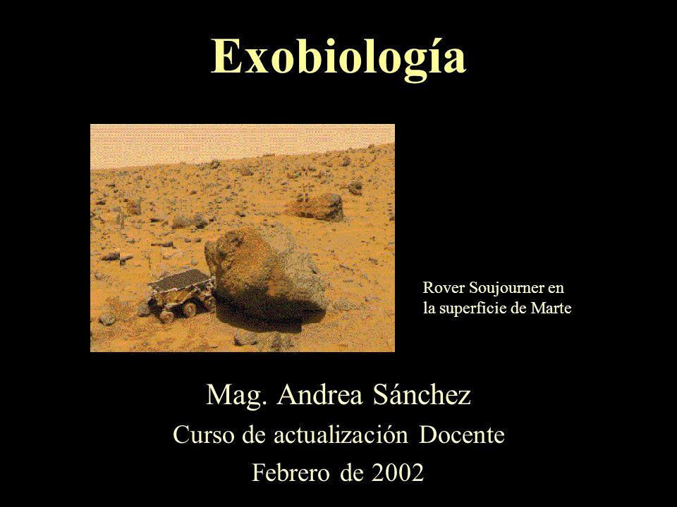 Mag. Andrea Sánchez Curso de actualización Docente Febrero de 2002