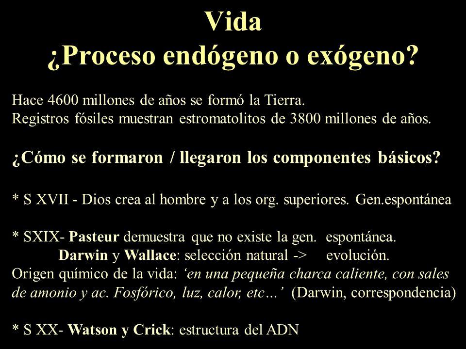 Vida ¿Proceso endógeno o exógeno
