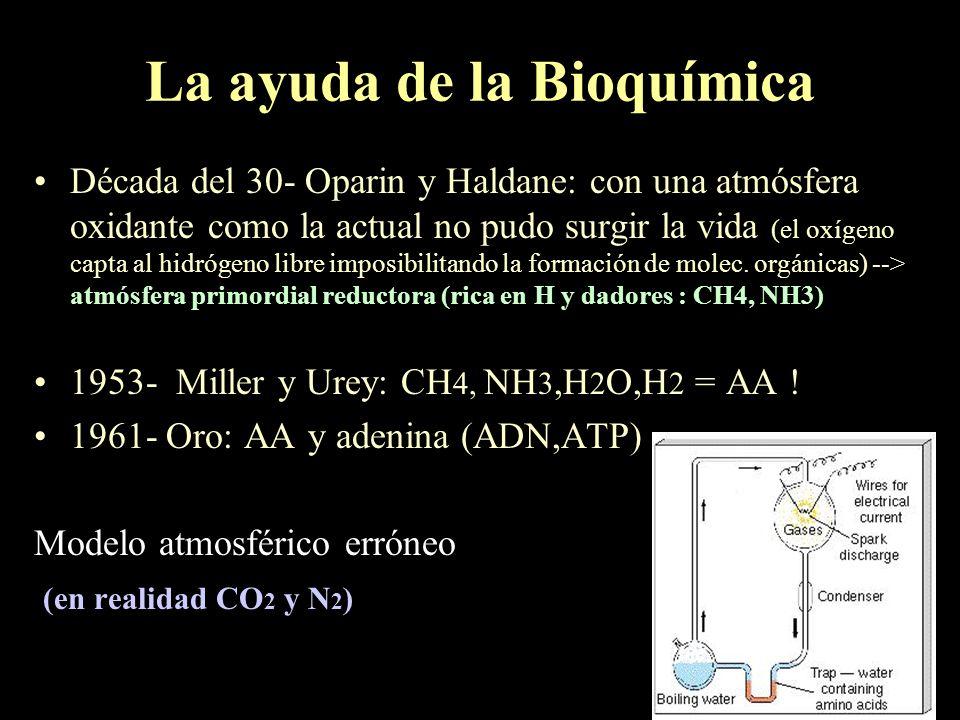 La ayuda de la Bioquímica