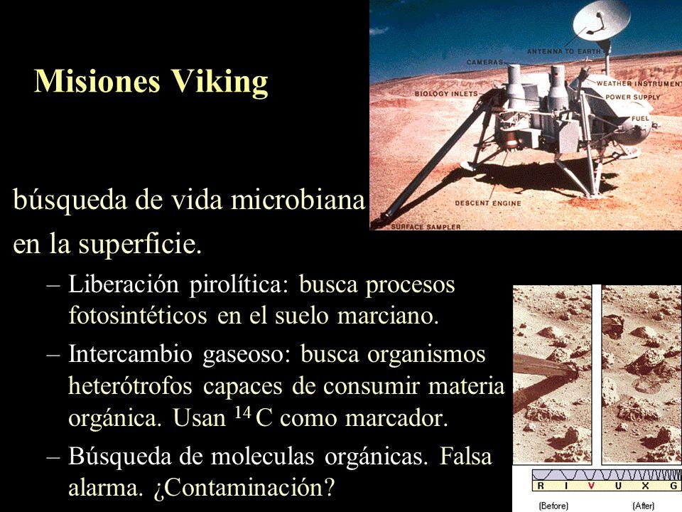 Misiones Viking búsqueda de vida microbiana en la superficie.