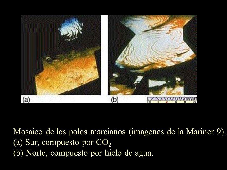 Mosaico de los polos marcianos (imagenes de la Mariner 9).