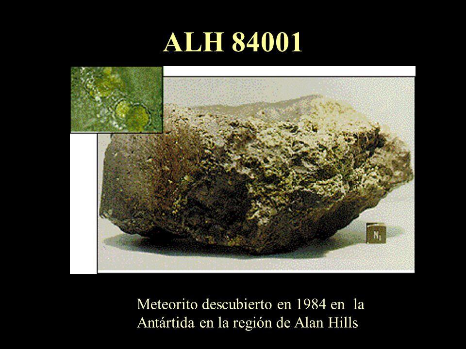 ALH 84001 Meteorito descubierto en 1984 en la