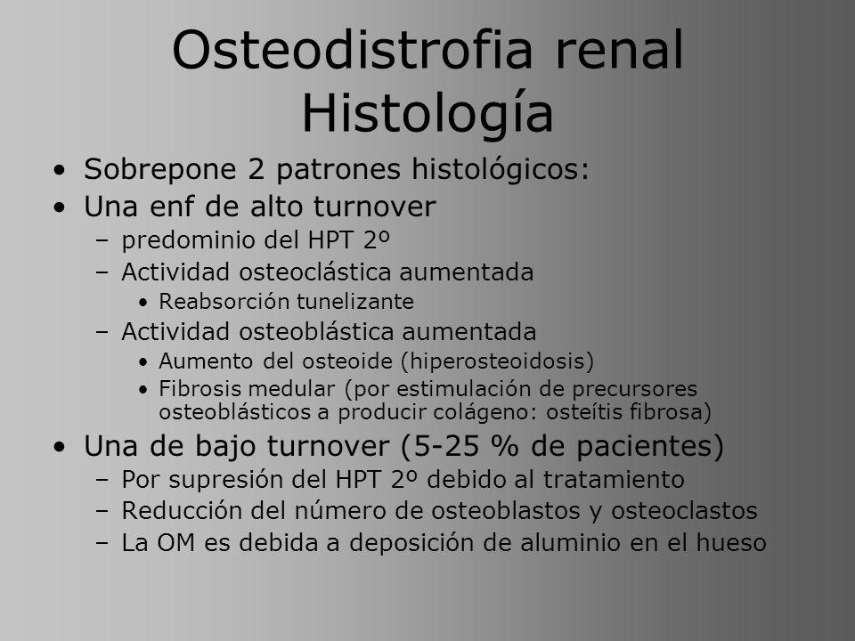 Osteodistrofia renal Histología