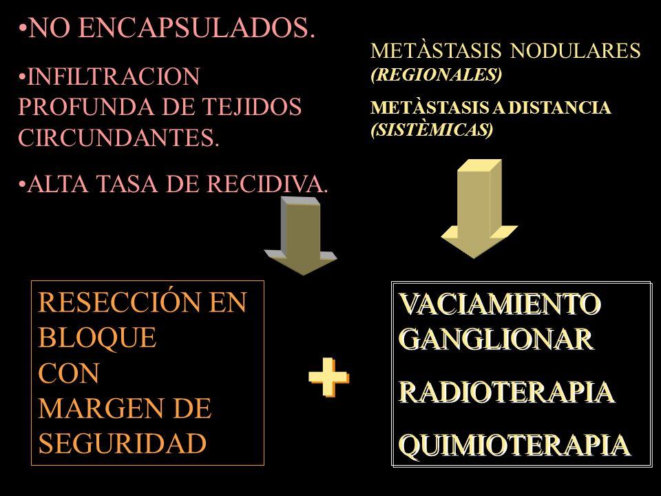 + NO ENCAPSULADOS. RESECCIÓN EN VACIAMIENTO GANGLIONAR BLOQUE CON
