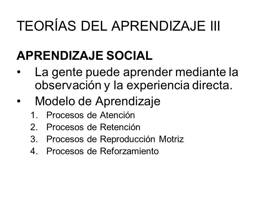 TEORÍAS DEL APRENDIZAJE III