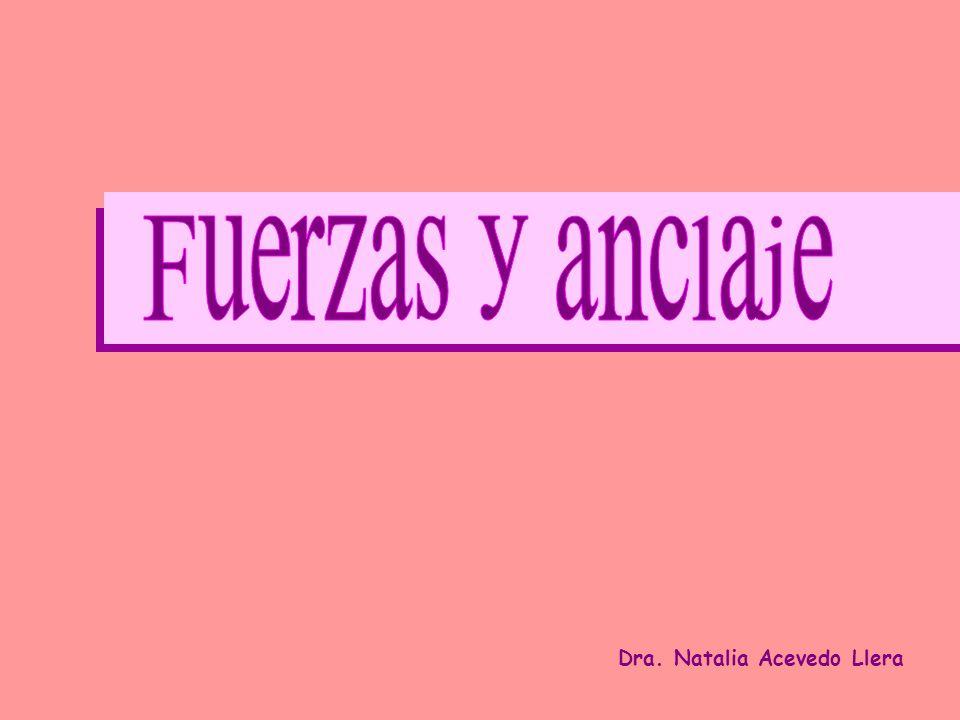 Fuerzas y anclaje Dra. Natalia Acevedo Llera