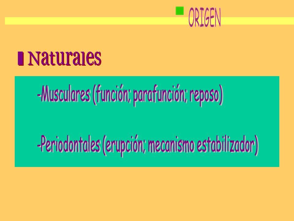ORIGEN - Naturales -Musculares (función; parafunción; reposo)